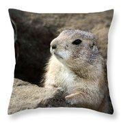 Prairie Dog Lookout Throw Pillow