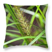 Prairie Dropseed Throw Pillow