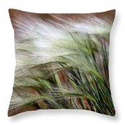 Prairie Grass, Badlands National Park Throw Pillow