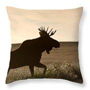 Prairie Moose Throw Pillow