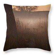 Prairie Pre Dawn Throw Pillow