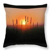 Prairie Sentinels Throw Pillow