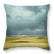 Prairie Storm Alberta Throw Pillow