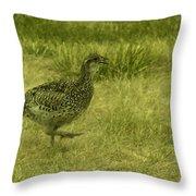 Prarie Chicken At Battle Of Little Bighorn Site Throw Pillow