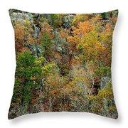 Prarie Hollow Gorge In Autumn Throw Pillow