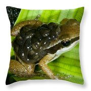 Pratts Rocket Frog With Young Throw Pillow