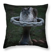 Pray For Rain Throw Pillow