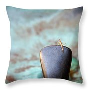 Praying For Water 2 Throw Pillow by Andee Design