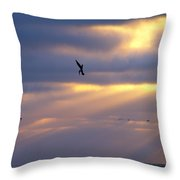Predator Drone In The Minds Of Fish Throw Pillow
