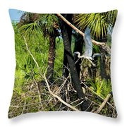 Prehistoric Throw Pillow