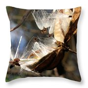 Prepare For Departure Throw Pillow