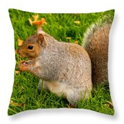 Preparing For Winter Throw Pillow
