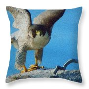 Preparing To Fly Off Throw Pillow