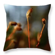 Press Conference Throw Pillow