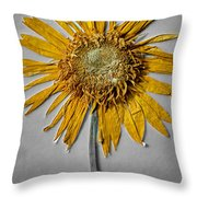 Pressed Sunshine Flower Throw Pillow