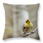 Pretty Finch Throw Pillow