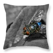 Pretty Fly For A Fly Guy Throw Pillow