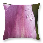 Pretty In Pink 4 Throw Pillow