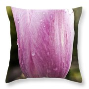 Pretty In Pink 7 Throw Pillow
