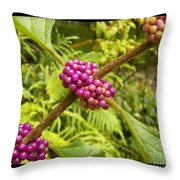 Pretty In Pink Berrys Throw Pillow
