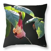 Pretty Ladies In Frilly Gowns II Throw Pillow