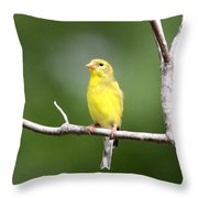 Pretty Little Lady Throw Pillow