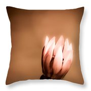 Pretty Lonely Throw Pillow