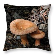 Pretty Mushrooms Throw Pillow