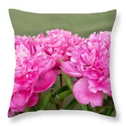 Pretty Peonies Throw Pillow