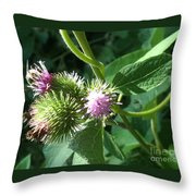 Pretty Prickles Throw Pillow