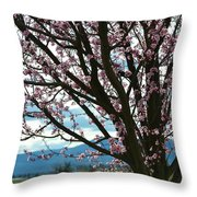 Pretty Spring Flowering Tree Throw Pillow
