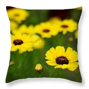 Pretty Yellow Throw Pillow