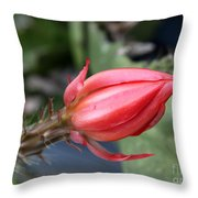 Prickly Bud Throw Pillow