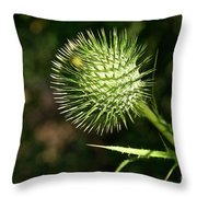 Prickly Globe Throw Pillow
