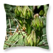 Prickly Pear Cactus Buds Throw Pillow