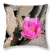 Prickly Pear Cactus Fertilized By Honey Bee Throw Pillow