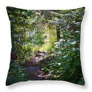 Priest Lake Trail Series IIi - Trail Shadows Throw Pillow