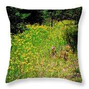 Priest Lake Trail Series Iv - Small Meadow Throw Pillow