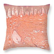 Primate Baboon Finger Pad Throw Pillow