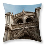 Primate Cathedral  Throw Pillow