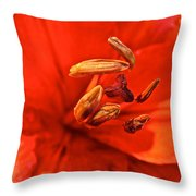Prime Red Throw Pillow