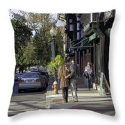 Princeton Afternoon - New Jersey Throw Pillow