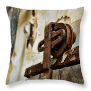 Prison Door Throw Pillow
