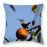 Private Reservoir Throw Pillow