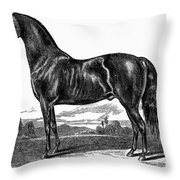 Prize Horse, 1857 Throw Pillow
