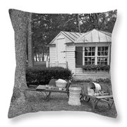 Produce Stand  Throw Pillow