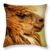 Profile Of A Camelid Throw Pillow
