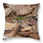 Profile Of Green Dragonfly Throw Pillow