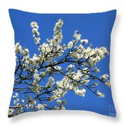 Promise Of Summer Throw Pillow