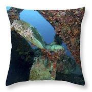 Propeller Of Hilma Hooker Shipwreck Throw Pillow